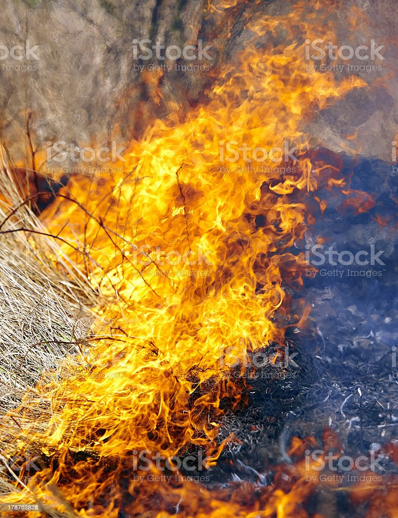 Fire in grass stock photo