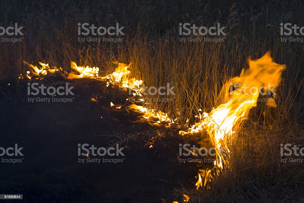 Fire in steppe stock photo
