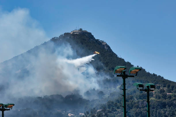 Fire in the Faron Massif, in Toulon, France, stock photo