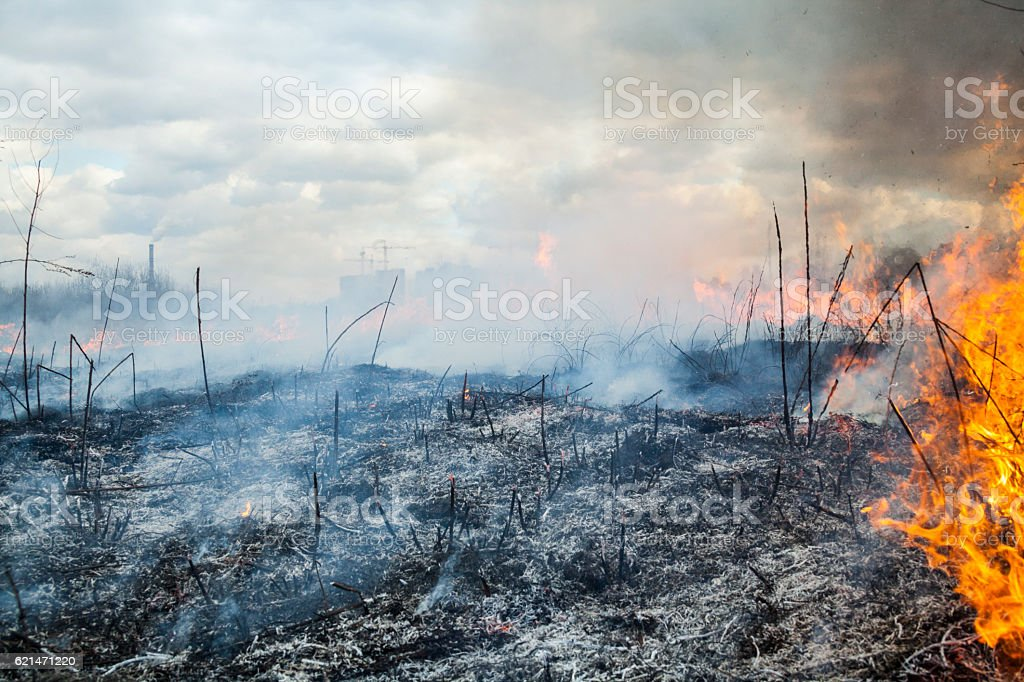 Fire in the field near the city stock photo