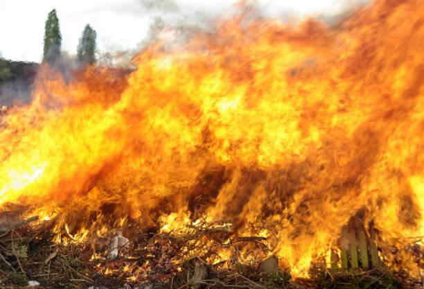 Feuer auf dem Feld stock photo