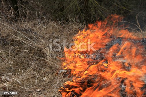 Fire In The Field Stock Photo & More Pictures of Color Image