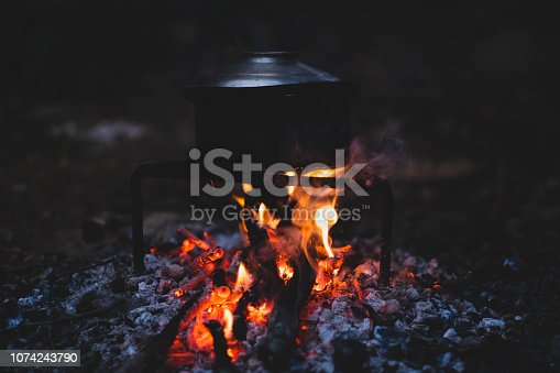 istock fire in the fireplace 1074243790