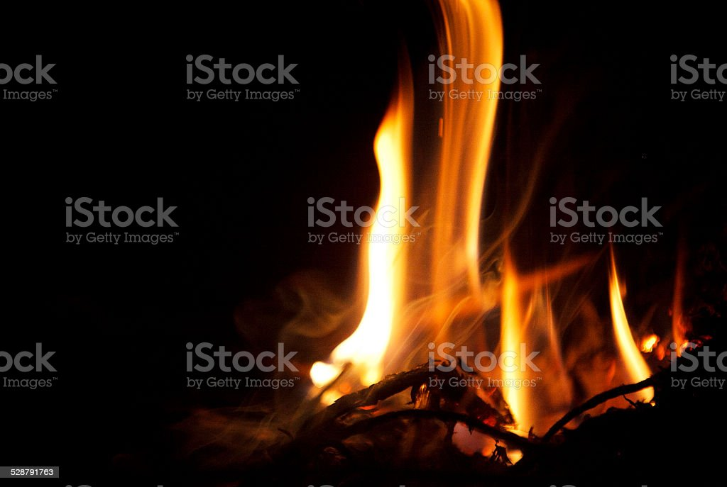 Fire is burning on bonfire stock photo