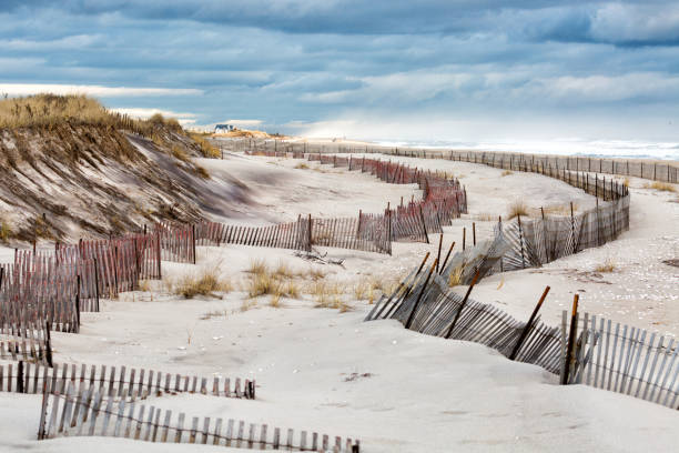 Fire Island Beach with Rows of Fences stock photo