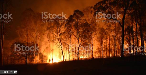 Fire Stock Photo - Download Image Now
