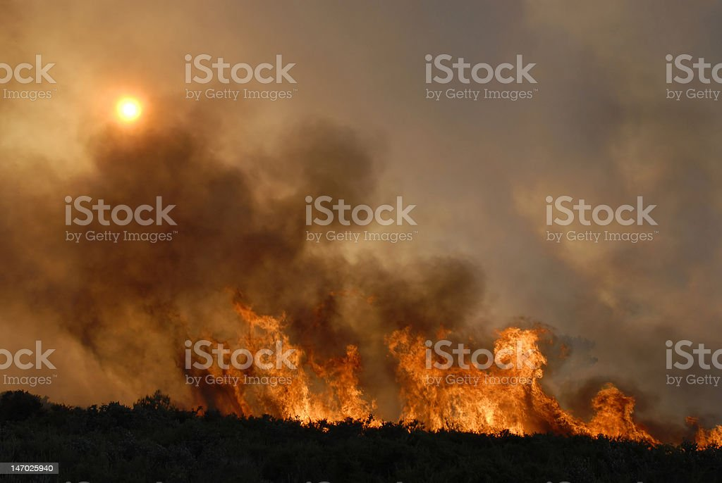Fire - Royalty-free Beschadigd Stockfoto