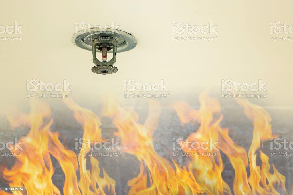 Bescherming tegen brand. Brand sprinkler hoofd op wit plafond in het gebouw, sensor-actie wanneer de rook gedetecteerd. - Royalty-free Alarm Stockfoto