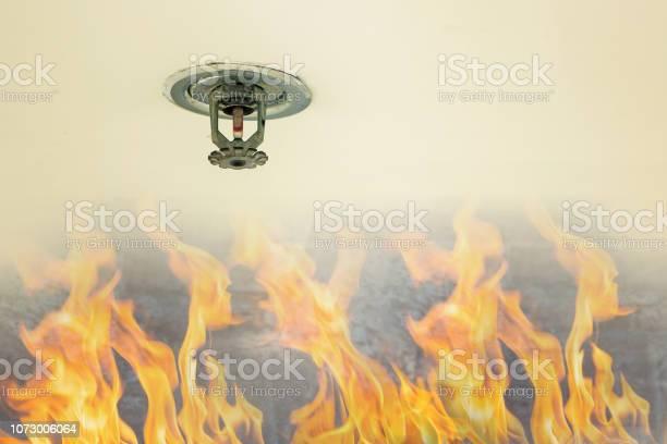 Bescherming Tegen Brand Brand Sprinkler Hoofd Op Wit Plafond In Het Gebouw Sensoractie Wanneer De Rook Gedetecteerd Stockfoto en meer beelden van Alarm
