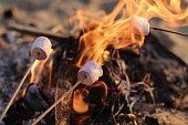 火ロースト murshmallows