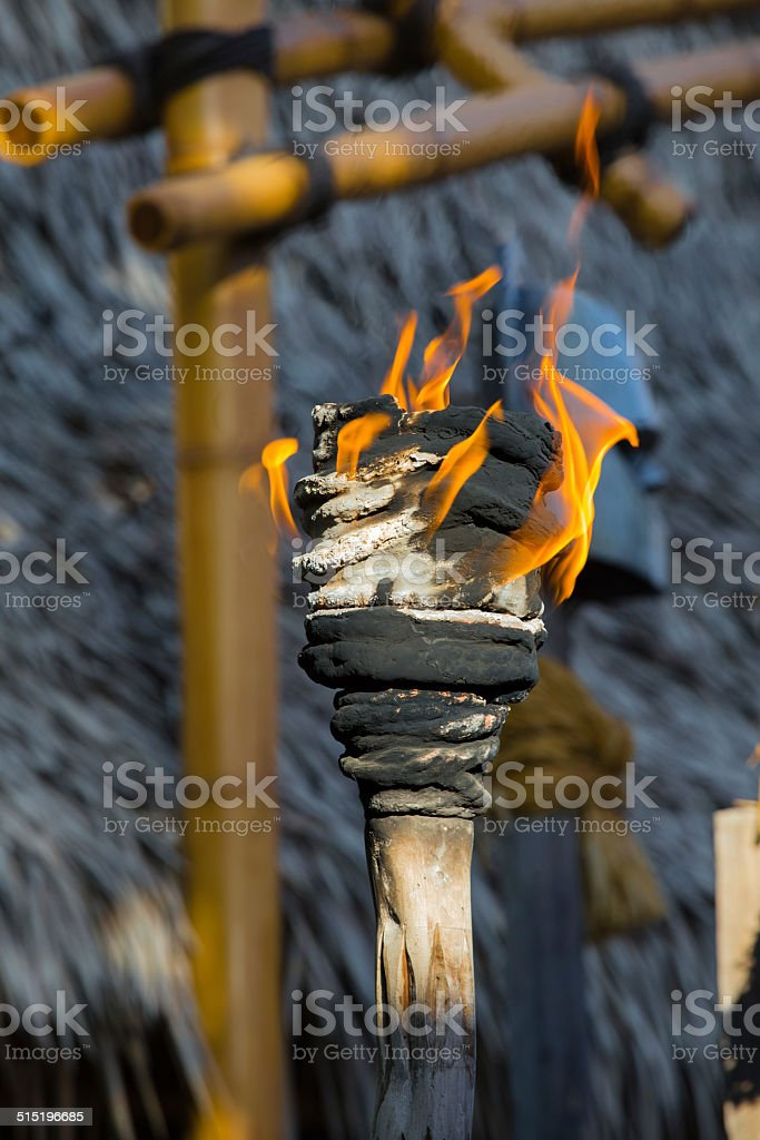 Fire torch or torch of leadership stock photo