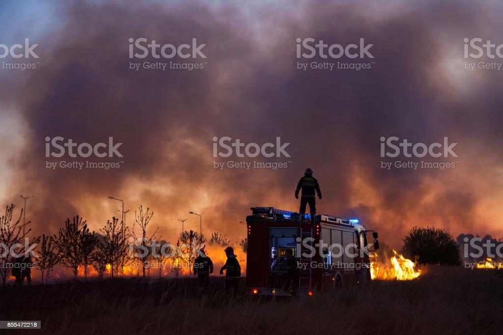 Caminhão de bombeiros e grupo de Bombeiros combate arbusto fogo à noite. - foto de acervo