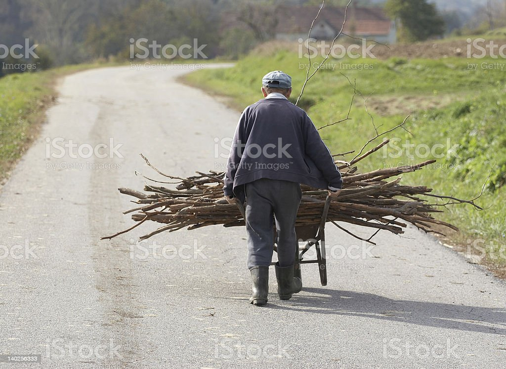 Fire wood transport royalty-free stock photo