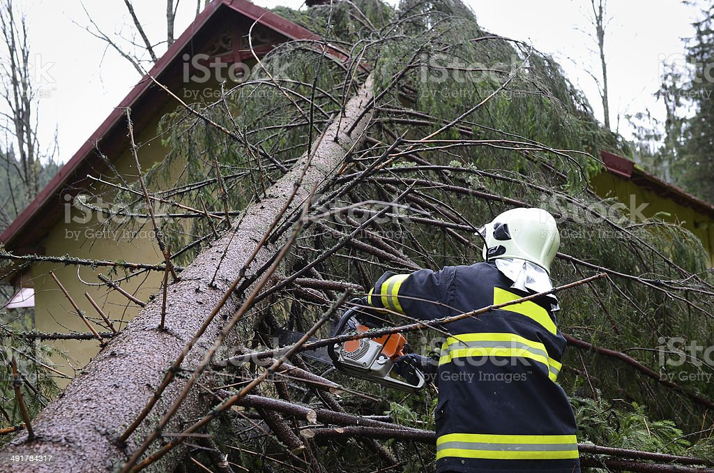 Firefighter Cutting Tree Stock Photo & More Pictures of Accidents