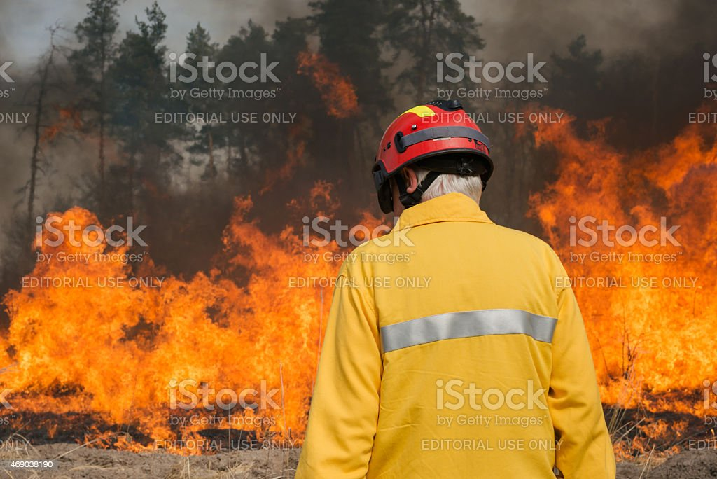 Firefighter looking on forest fire stock photo
