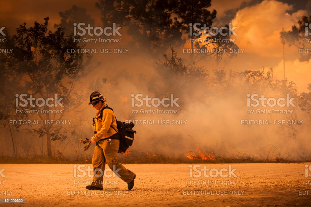 Firefighters respond to a forest fire stock photo