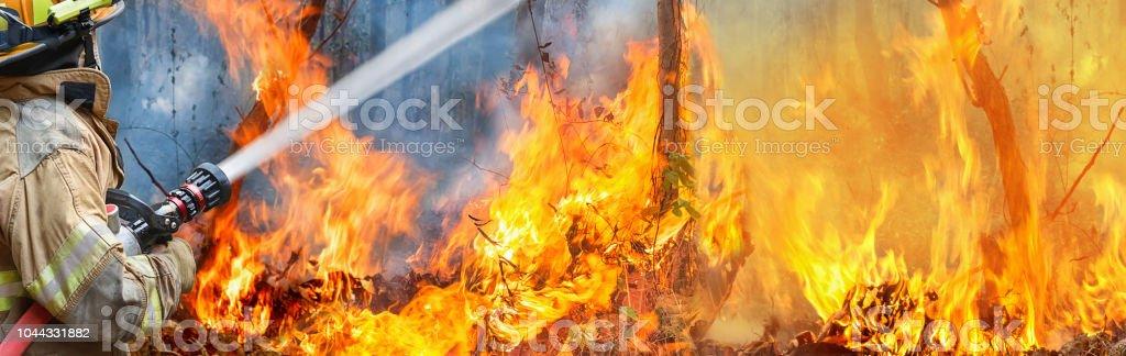 Feuerwehr Spritzwasser auf wildfire – Foto