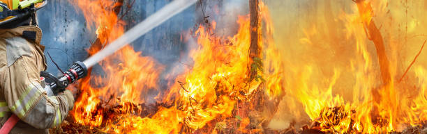 brandweer spuit water op wildvuur - bosbrand stockfoto's en -beelden