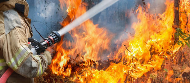 firefighters spray water to wildfire - firefighter stock photos and pictures