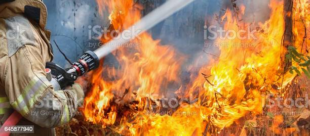 Firefighters Spray Water To Wildfire Stock Photo - Download Image Now