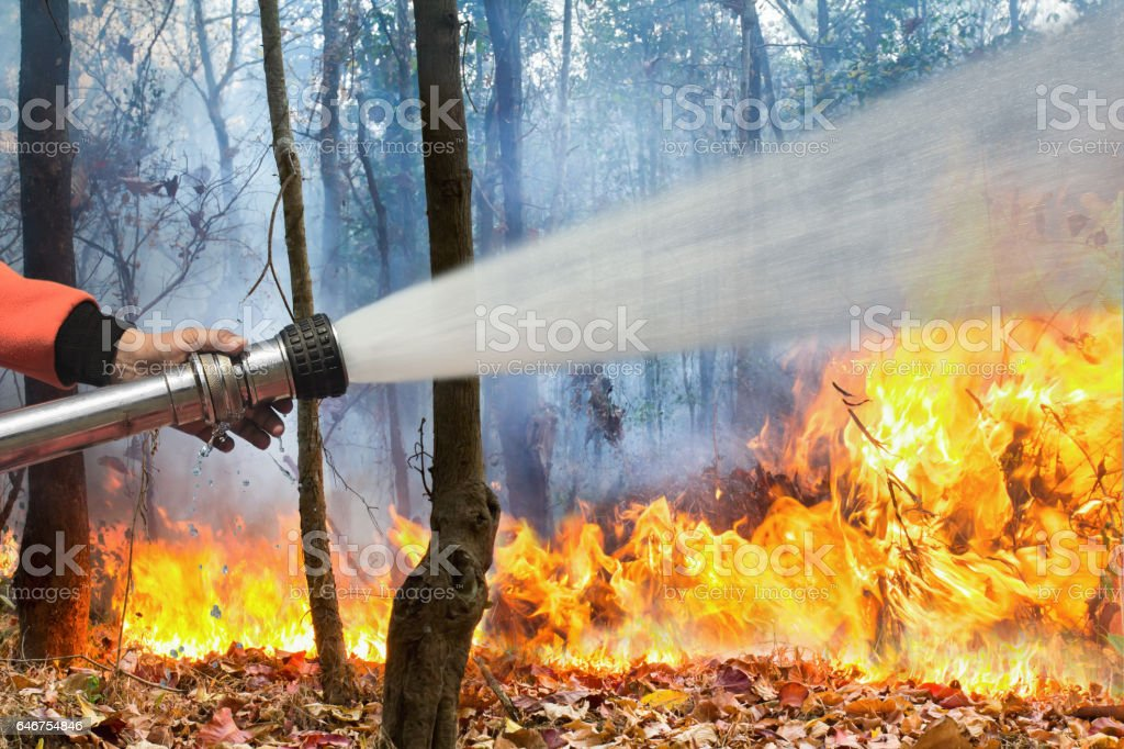 firefighters spray water to wildfire stock photo