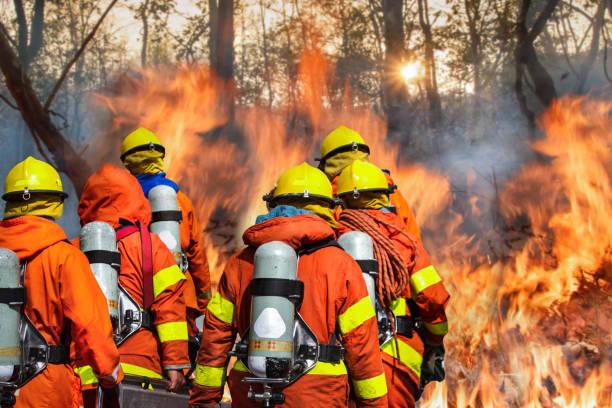 brandweerlieden team - bosbrand stockfoto's en -beelden