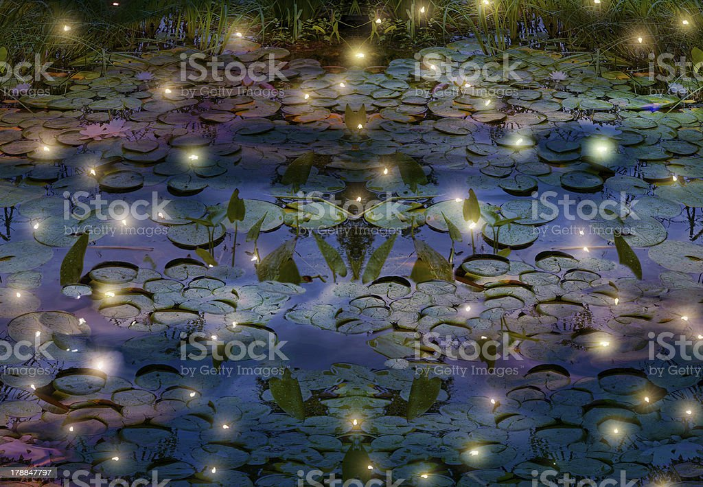fireflies and water lily pond at night stock photo