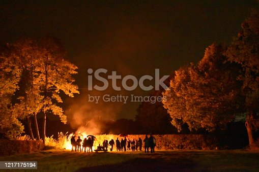 Silhouettes against the firelight of a bonfire illuminating the trees