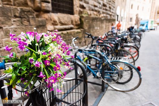 Firenze, Italy outside exterior of architecture building in Florence Tuscany with closeup of flowers on bicycle with row of bikes on rack