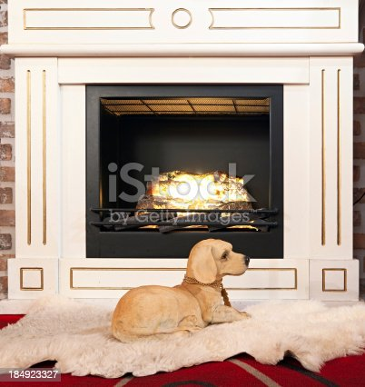 Sculpture of dog near fireplace
