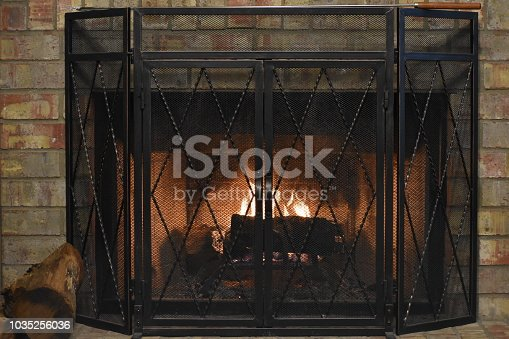 A fireplace with log and iron screen and blazing fire within.