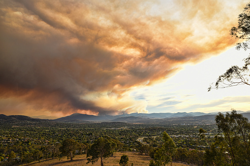 Canberra, Australia, 28 January 2020. Fires in Namadji Park, South of Canberra, threaten suburbs. The smoke from the fires increases the air pollution and creates a dark cloud over the city.