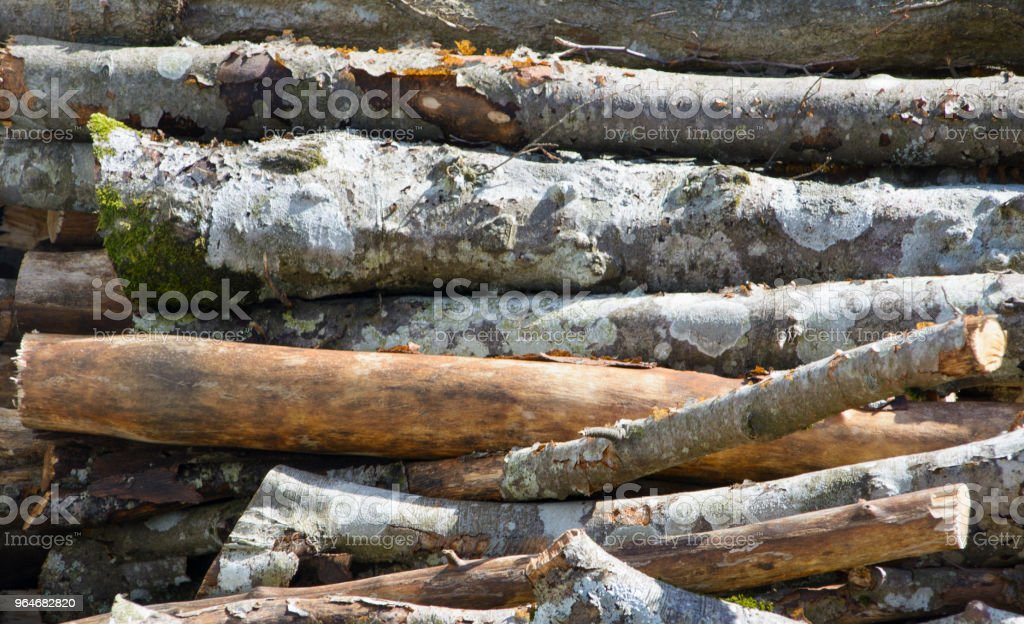 Legna impilata da ardere royalty-free stock photo