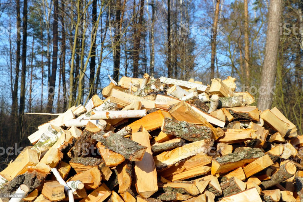firewood dries in sun rays stock photo