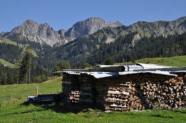 Brennholz in der Schweiz – Foto