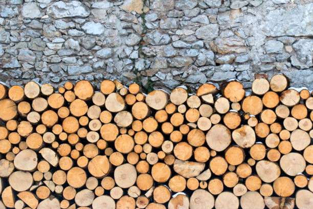 Firewood on a rock wall stock photo