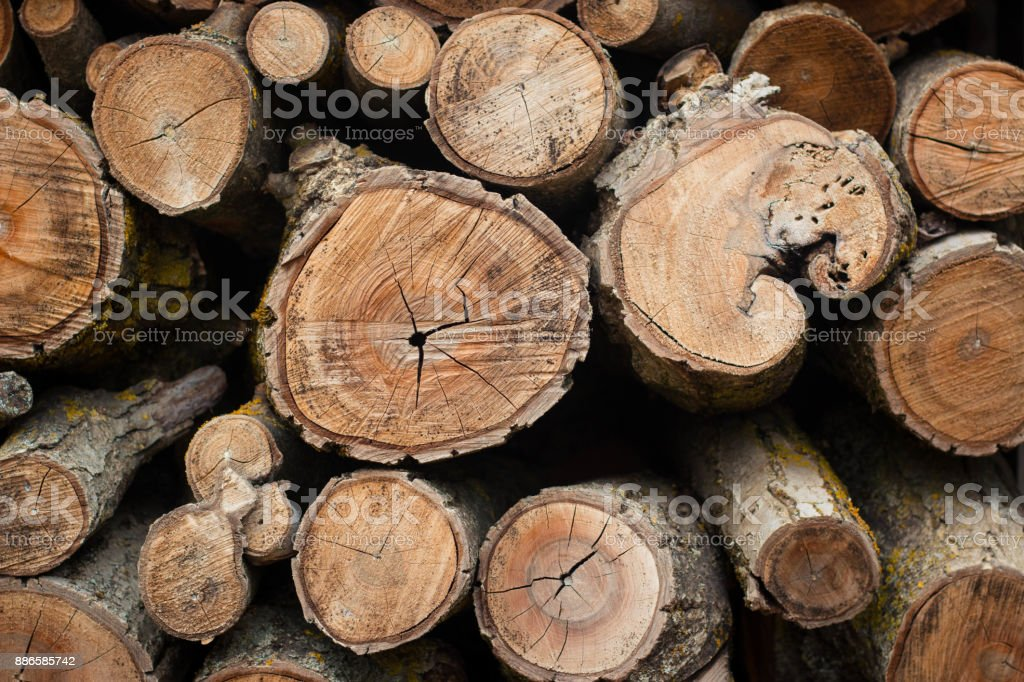 Firewood pattern, background or texture. stock photo