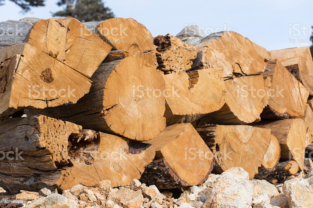 Firewood. stock photo