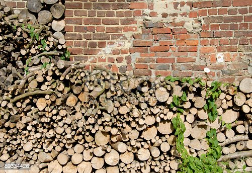 Woodpile stacked against the wall of a house.