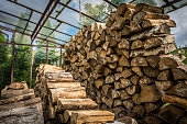 Firewood stacked in huge piles inside a hothouse in the garden