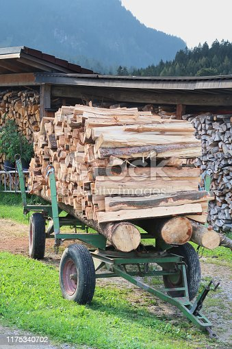 A wagon trailer agricultural vehicle stacked high with cut firewood logs is parked at a residence in the Austrian Bavarian Alps as owners prepare burning fuel for winter.  The wagon is close up, center of the frame, in a vertical composition, unhitched from any tow vehicle, surrounded by a glimpse of rural setting, but taking up most of the frame.