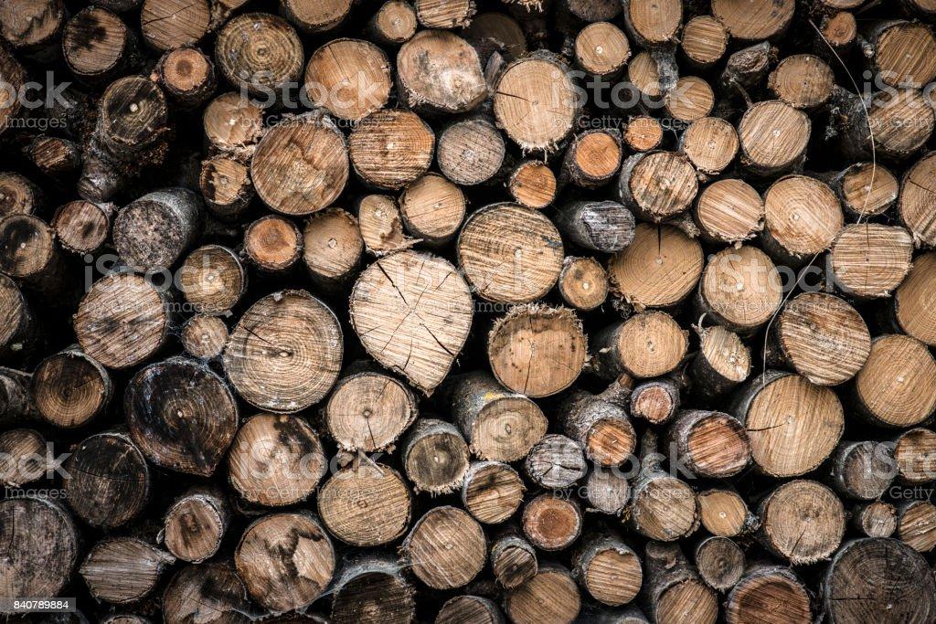 Pile de bois de chauffage bois - Photo