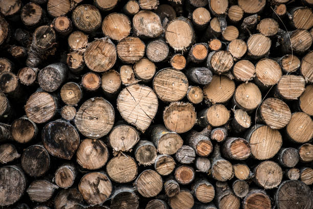 Firewood Woodpile Firewood log stock pictures, royalty-free photos & images