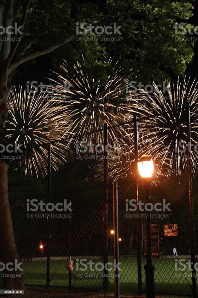 Firework Blasts over Park - White stock photo