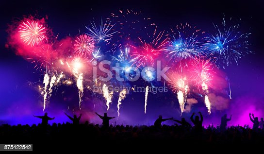 istock Firework Display With Celebrating People 875422542