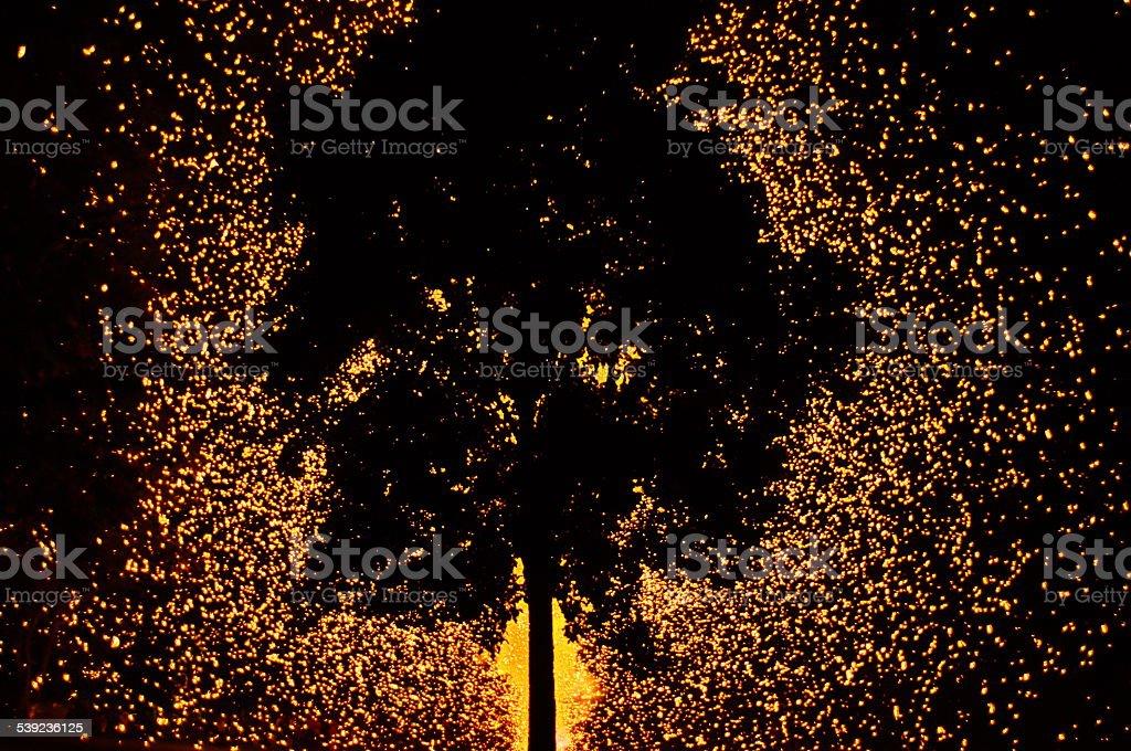 Fuego artificial árbol foto de stock libre de derechos