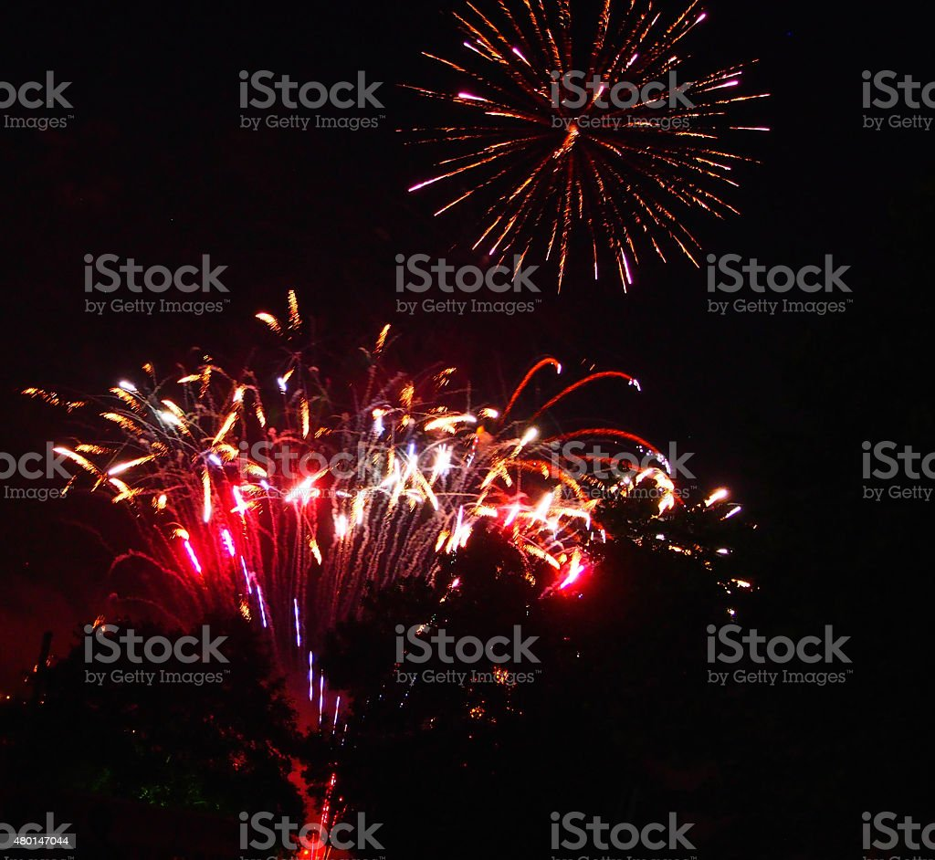 Fireworks Above Trees stock photo