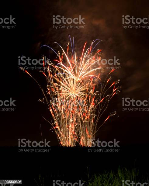 Photo of Fireworks in Bloom