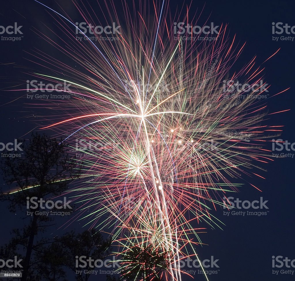 Fireworks Over Trees 2 royalty-free stock photo
