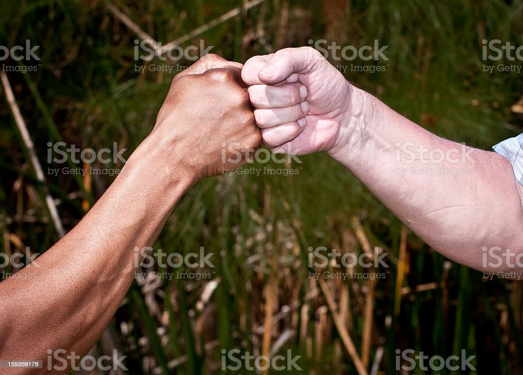 First Bump one African American Fist and One Caucasian Fist royalty-free stock photo